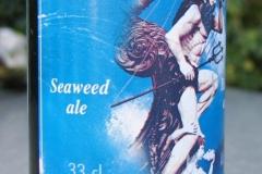 Seaweed ale Tonnerre de Brest