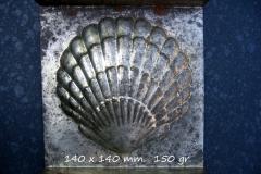 Metal, Bivalve-003