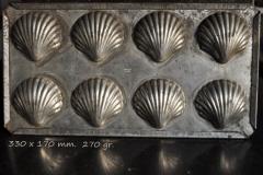 Metal, Bivalve-009