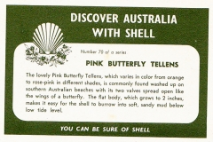 Pink Butterfly Tellens-2 70