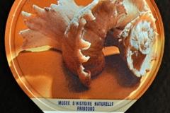 Coraliophyla sinistral