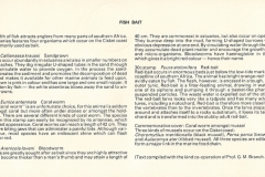 South Africa Ciskei 1984 Inhoud