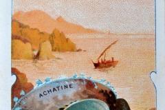 Achatine-1