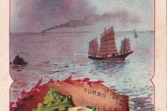 Turbo-1