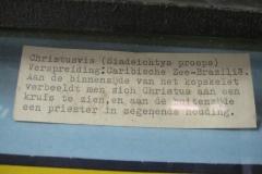 Schelpenmuseum Zaamslag-012