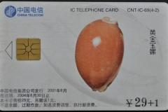 China 2001 Cypraea aurantium