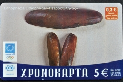 Greece 2004 Lithophaga lithophaga 643