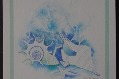 Gastropode-002
