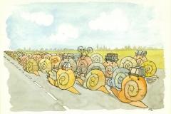 Snail 1229-1