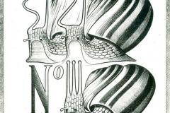 Snail Sizi Gazette 1577-1