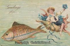 Lambis-1743-1