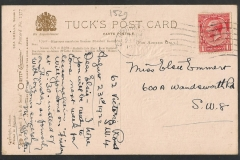 Tuck Postcard, Hippopus, Haliotis, Wulk, Mussel, 1529-2