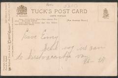 Tuck Postcard, Murex ramosus etc.1612-2