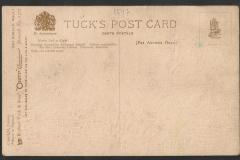 Tuck Postcard, Nautilus, Lambis, Tonna, 1547-2