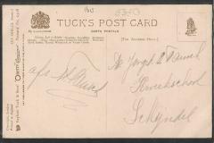 Tuck Postcard, Nautilus pompilius, Murex etc.1613-2