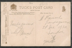 Tuck Postcard, Turbo marmoratus, Haliotis etc.1614-2