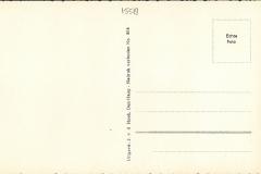 Schelpenvisser 1558-2