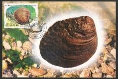 Korea 2002 Lamprotula coreana 1140
