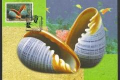 Thailand 1997 Marginella elegans 708