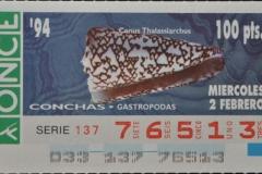 Conus thalassiarchus