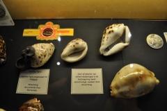 Speelgoedmuseum-014