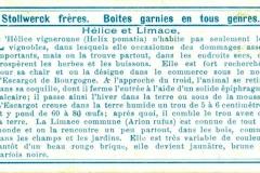 Hélice et Limace-2