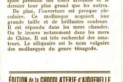 Turbo marbre, Siliquaire-2
