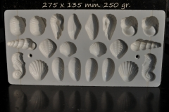 Plastic, Gastropode, Bivalve, Seahorse-1