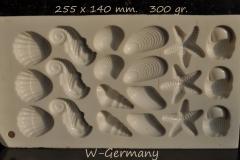 Plastic, Gastropode, Bivalve, Seahorse, Starfish-1