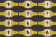 Murillo Yellow 13-24_29 x 67 mm