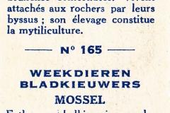 Moule-2 165