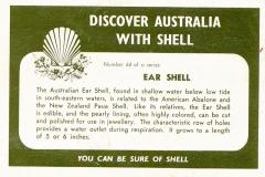 Ear Shell-2 64