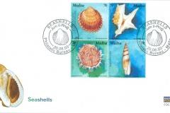 Malta 2003 Cardium, Aporhais, Spondylus, Mitra