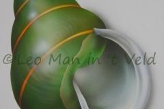 Leo 2004-2 Antwerp, Belgium, Landsnail