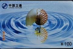 China 2004 Nautilus pompilius