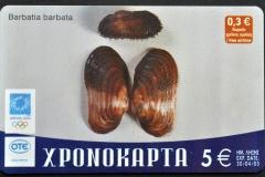 Greece 2004 Barbatia barbata 644