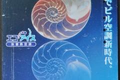 Japan Nautilus half 639