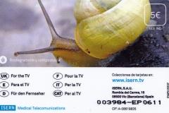 Spain Landsnail 655 back
