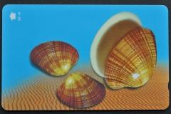 Sultanate of Oman 2001 Callista erycina 285