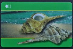 Sultanate of Oman 2001 Murex malabaricus 196