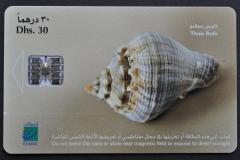 United Arab Emirates Thais bufo 311