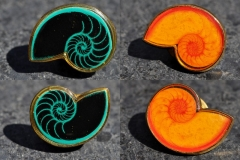 Nautilus, yellow and green