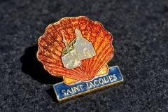 Pecten, Saint Jacques