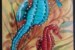 Seahorse Gastropode