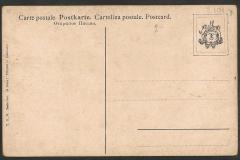 Turbo sarmaticus, Cypraea etc. 101-2. 101-2