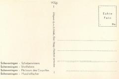Schelpenvisser 1563-2