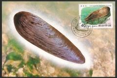 Korea 2002 Lanceolaria cospidata 1141