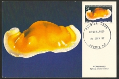 New Caledonia 1987 Cypraea moneta rostrated 1390