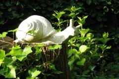 Stone, Garden