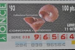 Calliostoma formosensis